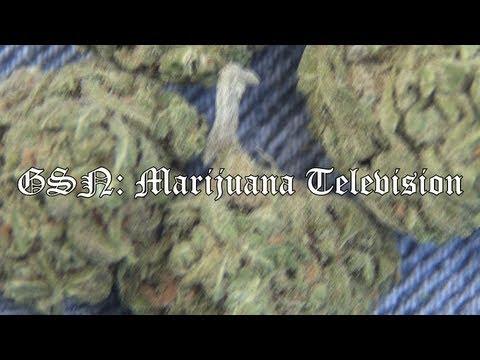 Download GSN - Marijuana television