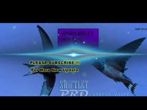 SUARA WALET PLUS ULTRASONIC FREKUENSI TINGGI ANTI PREDATOR | HQ External 02 Swiftlet Pro 2018