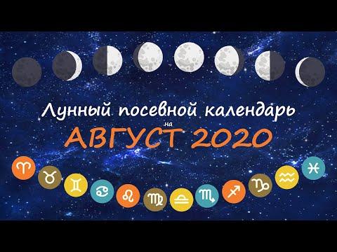 [Август 2020] Лунный посевной календарь огородника-садовода | Флористикс Инфо