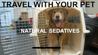 Natural Sedatives for Travelling With Your Dog or Cat