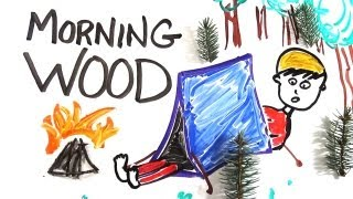 Repeat youtube video The Science of 'Morning Wood'