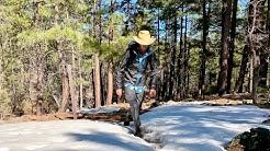 Happy Jack Passage: Arizona Trail