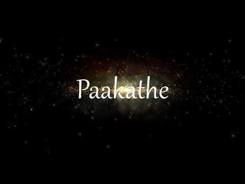 Paakathe Piano BGM  Aaru