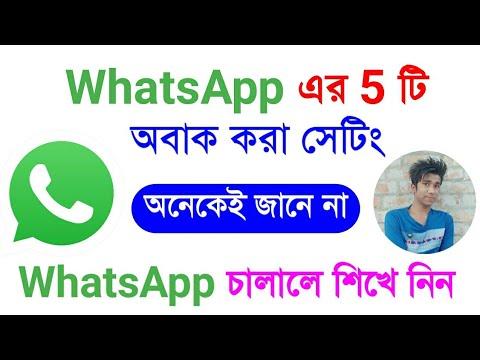 WhatsApp Most Important