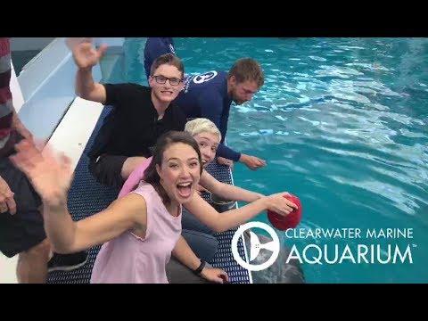 Lip Sync Battle with Dolphin Tale Stars - Nathan Gamble, Austin Highsmith & Cozi Zuehlsdorff