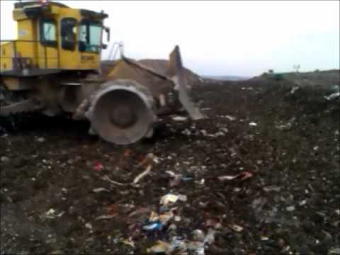 A day at the landfill