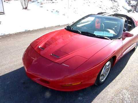 1995 pontiac firebird 2 dr std hatchback auto v6 t tops. Black Bedroom Furniture Sets. Home Design Ideas
