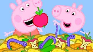 Peppa Pig en Español El Misterio | Episodios completos | Pepa la cerdita