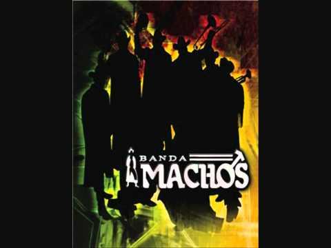 Banda Machos Mini Mix