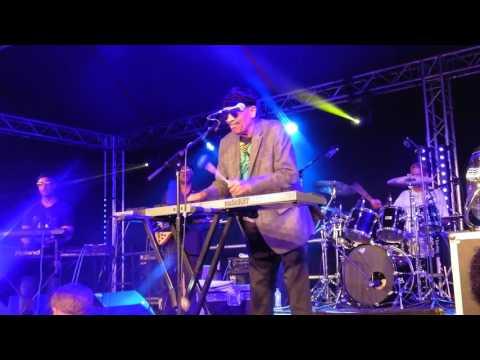 Ealing Jazz Festival 2016 : Roy Ayres : Sunshine