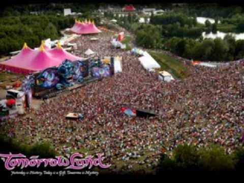 Tomorrowland 2011 - Avicii