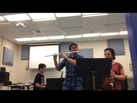 A Whole New World  Flute, Clarinet, and Piano Trio