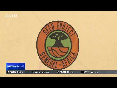 Basketball talent incubation centers starting to pay dividends in Senegal