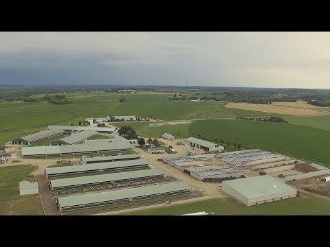 Holstein America: February 2018