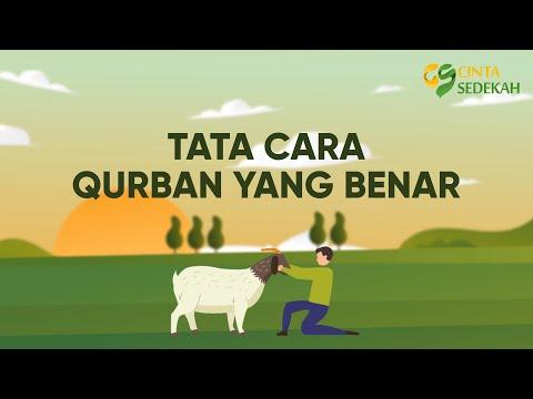 Assalamu'alaikum sedulur kabeh, Vidionya semoga menambah wawasan kita, bagaimana menyembelih hewan q.