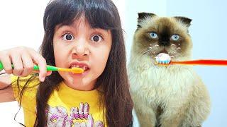 Kedim Dişlerini Fırçalıyor  قطة شفا ولدت !!!