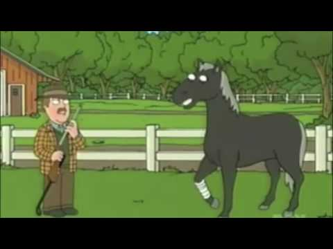 Family Guy Funniest Animals part 1