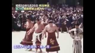 National Art of Sumo Volume 11 : 1978 -- 1980 http://www.dosukoi.fr.