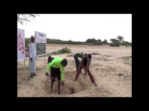 Borehole #195 Awtad Alkhair Somalia