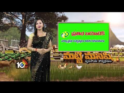 పాడి పరిశ్రమ..| Dairy Farm Developemnt | M. Koteshwar Rao | Matti Manishi | 10TV