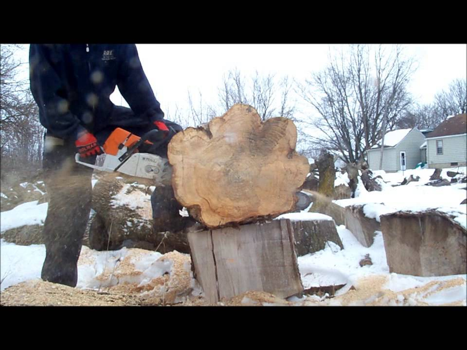Stihl MS461 VS MS460 chainsaw