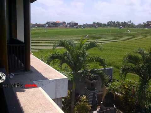 Jual VILLA di BERAWA Canggu Bali