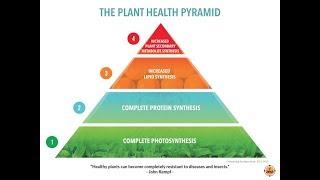 Plant Health Pyramid