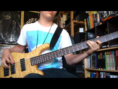 Biffy Clyro - Little Hospitals (bass cover)