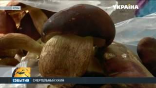видео В Запорожской области 14 человек отравились грибами