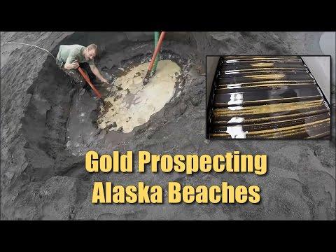Alaska Beach Prospecting - LOTS Of FINE Gold