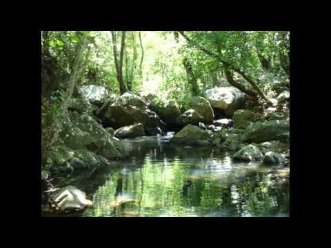 10 de los peores toboganes de agua del mundo
