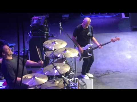 DESCENDENTS - Spineless and Scarlett Red / Catalina