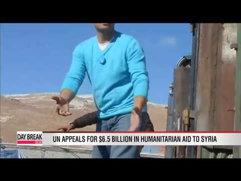 UN appeals for $6.5 billion in humanitarian aid to Syria