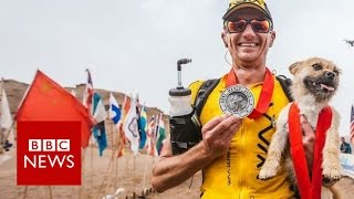 Stray dog joined extreme runner during China race - BBC News