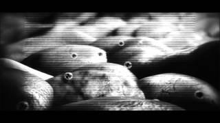 kryss hypnowave - firmicutes