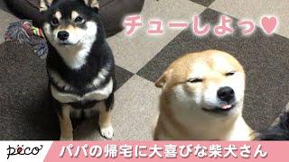 via Instagram@saki.ibuki.hazuki https://www.instagram.com/saki.ibuk...