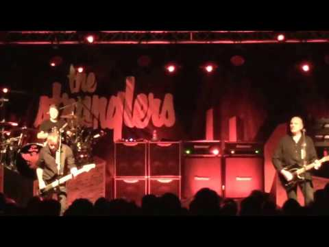 The stranglers Lincoln the raven 7/3/17