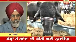 ABP SANJHA-Cow fair in Ludhiana to boost up Dairy Farming