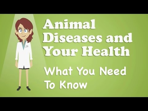 Animal Diseases and Your Health What You Need To Know