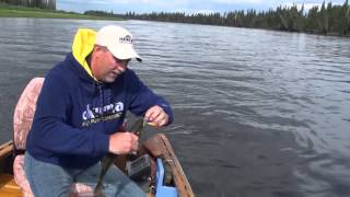 Trolling Mag Lip Crankbaits for Walleye