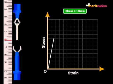 Hooke S Law Stress And Strain Test Youtube