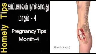 கர்ப்பகாலம் நான்காவது  மாதம் மாதம் - 4 கர்ப்ப கால உணவுகள் 4th month pregnancy tips in Tamil
