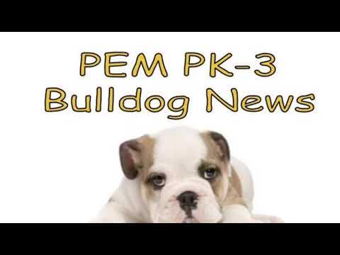 2018-11-02 PEM PK-3 Bulldog News