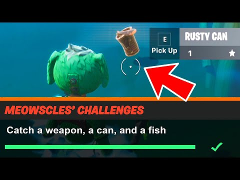 Catch A Weapon, A Can, And A Fish Fortnite