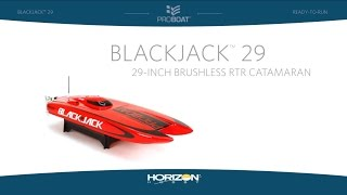 Blackjack 29 Brushless Catamaran RTR V2 by Pro Boat