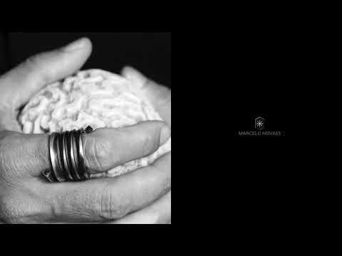 Vídeo Ensaio sobre o entendimento humano