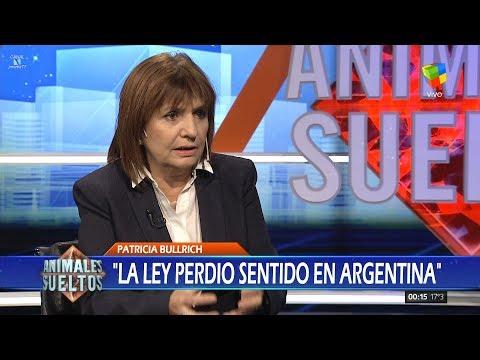 """Patricia Bullrich en """"Animales sueltos"""" de A.Fantino - 13/07/17"""