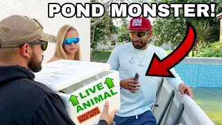 Surprising Catch Em All Fishing with a NEW POND MONSTER!