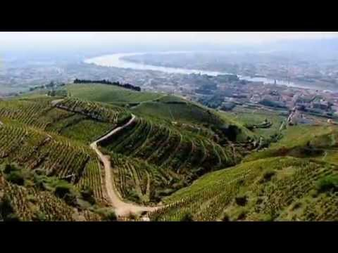 LCBO Discover, Wines Of The Rhone Valley, Part 1 0f 3.mov