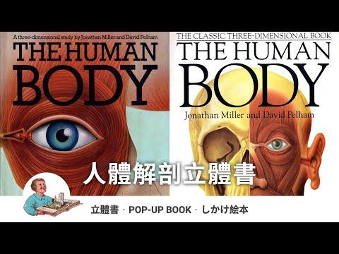 立體書: The Human Body